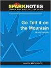 Go Tell it on the Mountain (SparkNotes Literature Guide Series) - James Baldwin