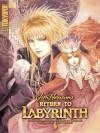 Return to Labyrinth, Volume 1 - Jake T. Forbes