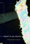 What Is an Image? - James Elkins, Maja Naef