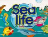 Sea Life: Four Exciting Information Board Books - Moira Butterfield