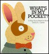 What's in My Pocket? - David A. Carter