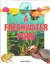 A Freshwater Pond - Adam Hibbert