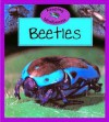 Beetles - Barrie Watts