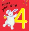 Now You Are 4 - Lois Rock