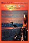 Cedar Key: A Jack Shaw Adventure - James L. W. West III