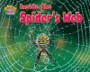 Inside the Spider's Web - Natalie Lunis