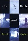 The Little Book - David Hughes
