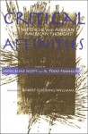 Critical Affinities: Nietzsche And African American Thought (Suny Series, Philosophy and Race) - Jacqueline Scott, A. Todd Franklin, Robert Gooding-Williams