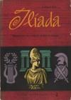 Ilíada - Homer, Carlos Alberto da Costa Nunes