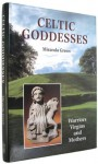 Celtic Goddesses: Warriors, Virgins, and Mothers - Miranda Aldhouse-Green