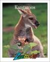 Kangaroos (Zoobooks Series) - Beth Wagner Brust