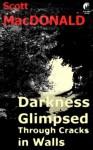 Darkness Glimpsed Through Cracks in Walls - Scott MacDonald
