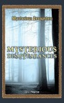 Mysterious Disappearances - Q.L. Pearce