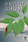 Snow - Jenifer Levin