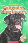 Labrador Retrievers - Mari C. Schuh
