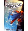 Spider-Man: New York Stories - Karl Kesel, Kurt Busiek, Stan Lee, Paulo Siqueira, Patrick Olliffe, Marcos Martin