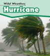 Hurricane - Catherine Chambers