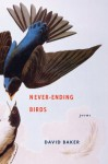 Never-Ending Birds: Poems - David Baker