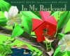 In My Backyard - Margriet Ruurs, Ron Broda