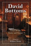 David Bottoms: Critical Essays and Interviews - William Walsh