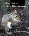 Making Choices: Life is Like Acorns - Cheryl Rogers