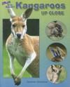 Kangaroos Up Close - Carmen Bredeson