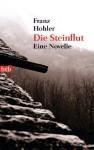 Die Steinflut: Novelle - Franz Hohler