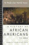 To Make Our World Anew: Volume I: A History of African Americans to 1880 - Robin D.G. Kelley