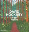 David Hockney: A Bigger Picture - Tim Barringer, Edith Devaney