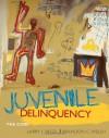 Juvenile Delinquency: The Core - Larry Siegel, Brandon Welsh