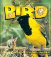 The Life Cycle of a Bird - Bobbie Kalman, Kathryn Smithyman