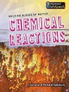 Chemical Reactions (Infosearch: Building Blocks Of Matter S) - Louise Spilsbury, Richard Spilsbury