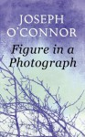 Figure in a Photograph: A Short Story from 'Where Have You Been?' - Joseph O'Connor