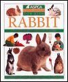 Rabbit (ASPCA Pet Care Guides for Kids) - Mark Evans