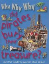 Why Why Why Did Pirates Bury Their Treasure? - Mason Crest Publishers