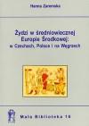 Żydzi w średniowiecznej Europie środkowej: w Czechach, Polsce i na Węgrzech - Hanna Zaremska