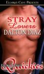 Stray Lovers - Dalton Diaz