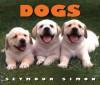 Dogs - Seymour Simon