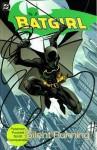 Batgirl Vol. 1: Silent Running - Scott Peterson, Kelley Puckett, Damion Scott, Robert Campanella