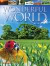 Wonderful World - Jim Pipe