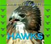 Wild Birds of Prey - Hawks (Wild Birds of Prey) - Deborah Kops