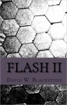 Flash II - David W. Blackstone