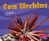 Sea Urchins - Jody Sullivan Rake