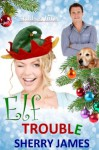 Elf Trouble - Sherry James