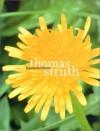 Thomas Struth: The Dandelion Room - Thomas Struth