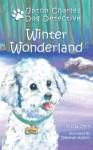 Winter Wonderland - D.G. Stern, Deborah Allison