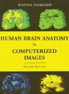 Human Brain Anatomy in Computerized Images - Hanna Damásio