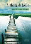 Modlitwa żaby. Księga opowiadań medytacyjnych - Anthony de Mello