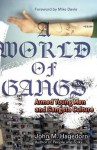 A World of Gangs: Armed Young Men and Gangsta Culture (Globalization and Community) - John M. Hagedorn