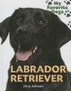 Labrador Retriever - Jinny Johnson